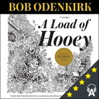 A Load of Hooey : A Collection of New Short Humor Fiction